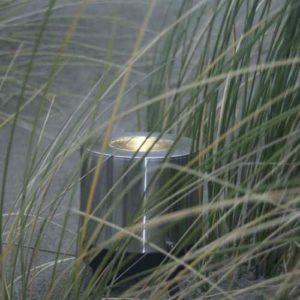 Edelstahl Bodeneuchte Garten Gräser Bambus beleuchten