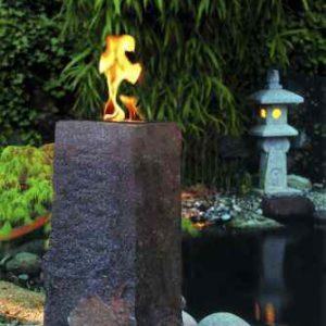 Feuergelbrenner im Garten