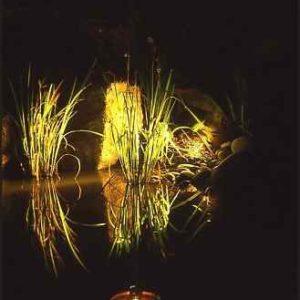 Gartenleuchte Teich