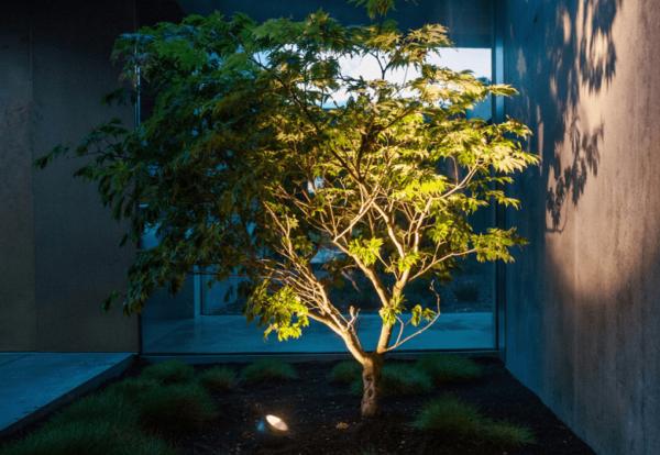 LED Baumbeleuchtung mit rundem Gartenspot