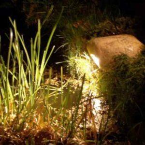 Teichbeleuchtung
