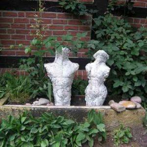Weißes gerissenes Torsopaar