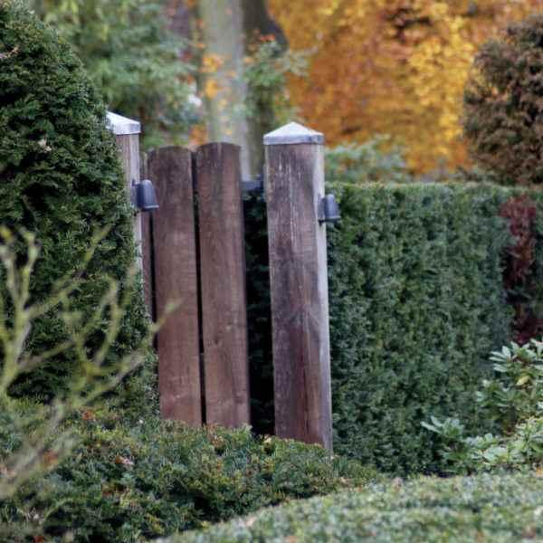 Holzpforte beleuchten außen