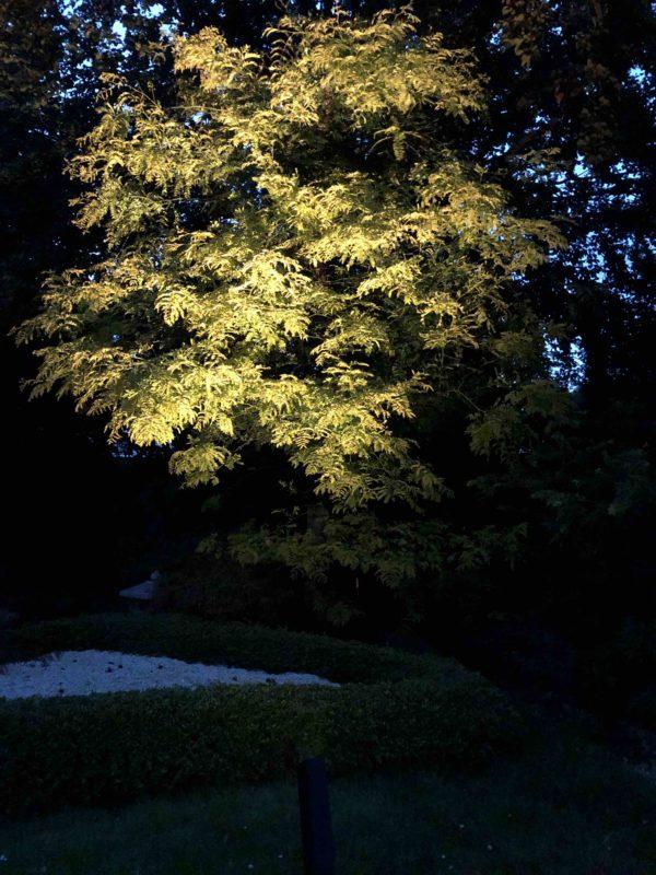 LED Gartenstrahler Baumstrahler