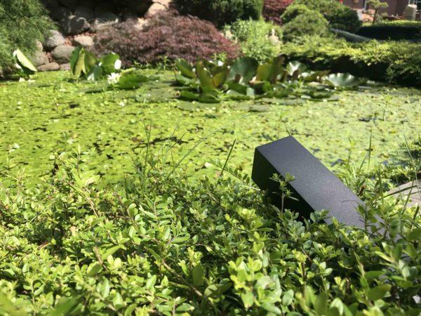 Led Gartenstrahler am Teich
