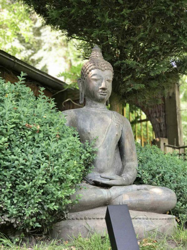 Led Gartenstrahler bestrahlt Buddha