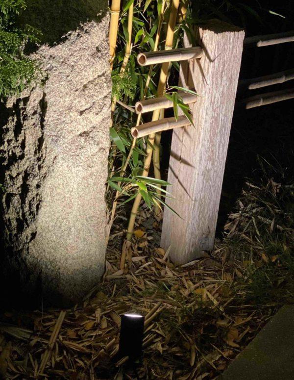 Bambus mit LED Strahler beleuchten