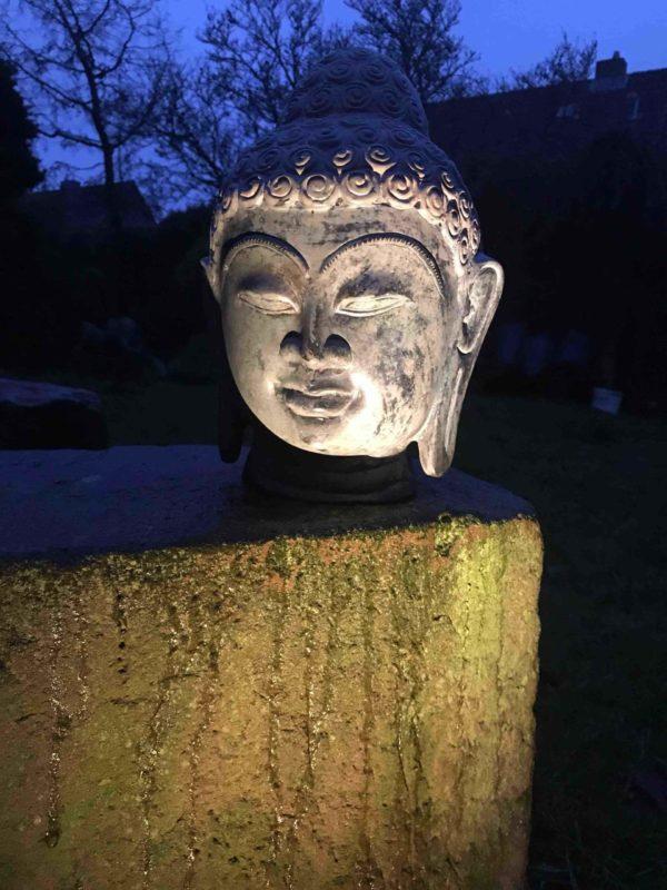 Buddhakopf nachts beleuchtet,Buddhakopf abends schön angestrahlt