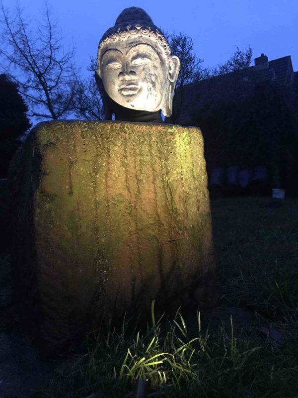 Buddhakopf nachts beleuchtet 2