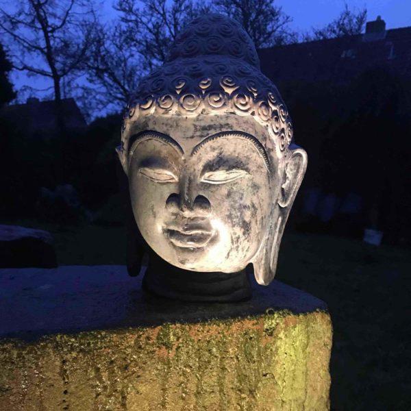 Buddhakopf nachts beleuchtet