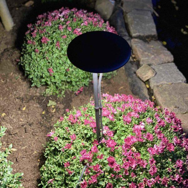 Filigrane Gartenleuchten für blendfreie schöne Lichtstimmungen