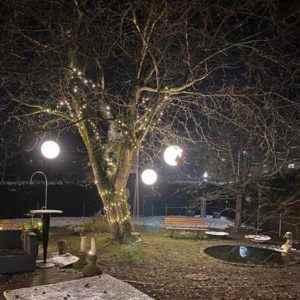 Baum mit großen leuchtenden Kugeln