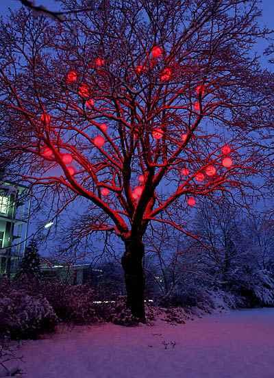Große rot farbige Kugel Hänge Baumleuchten.