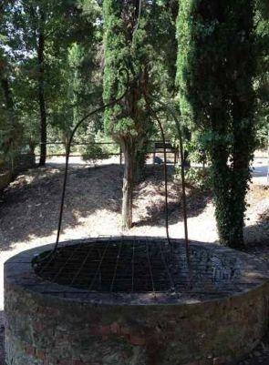 Schmiedeeiserne Brunnenabdeckung