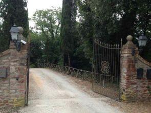 Schöner Schmiedeeiserner Zaun im Bereich der Grundstückseinfahrt